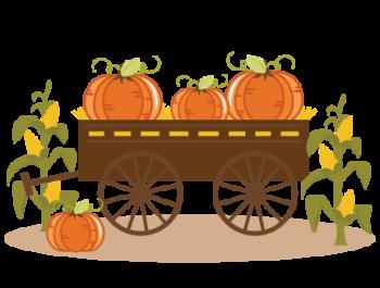 The Pumpkin factory